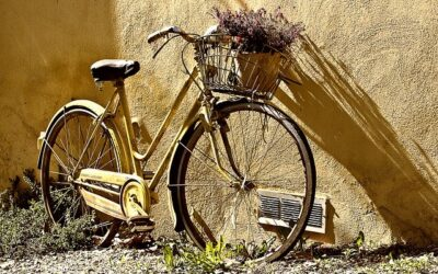 Lev et mere bæredygtigt liv